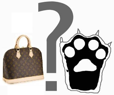 LV Bag or Bear's Paw?