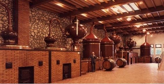 Cognac process
