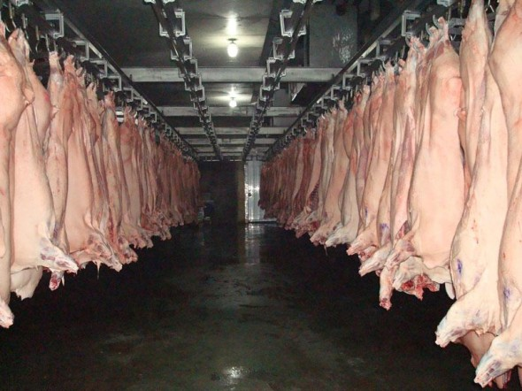 Food scandals in China, an opportunity for imported products!
