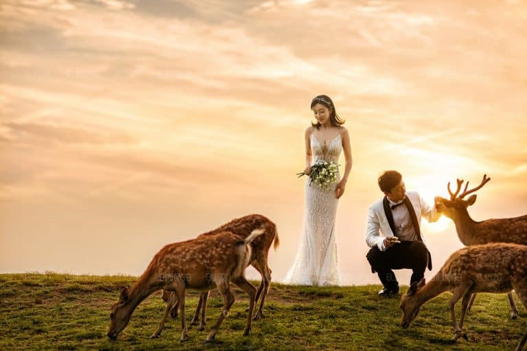 The Wedding Photo Industry in China Estimated at More Than $30 Billion